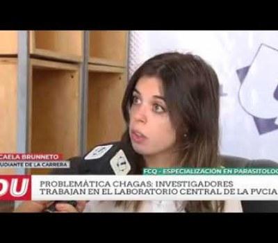 Parasitología: método para Chagas en recién nacidos (2)